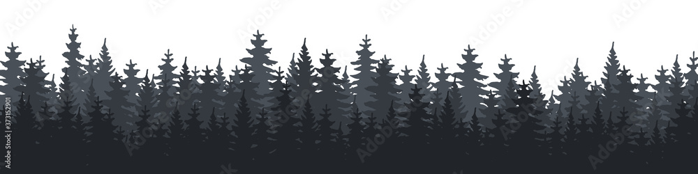 Fototapeta Forest. Forest Panorama. Forest background. Christmas Tree. Vector illustration
