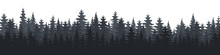 Forest. Forest Panorama. Fores...