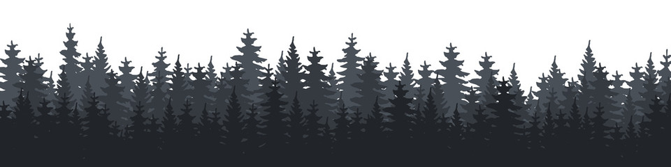 Forest. Forest Panorama. Forest background. Christmas Tree. Vector illustration