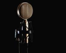 Professional Microphone With T...