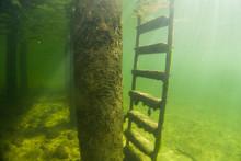 Traunsee Austrian Lake Underwa...