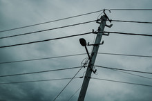 Concrete Pole With Electricity...