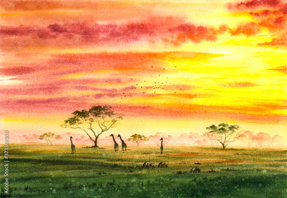 Fototapeta Watercolor Painting - Wild Giraffe and Zebra  with twilight, in Africa Field