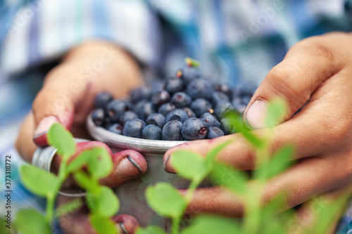 Photographie Kid hand holding bowl of freshly picked wild blueberries against bokeh green forest background