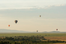 Hot Air Balloons Raising Up Fo...