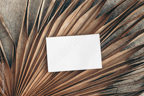 Summer stationery still life. Closeup of blank business card mock-up on dry palm leaf. Grunge beige concrete textured background. Flat lay, top view. Tropical vacation concept. Moody boho design.