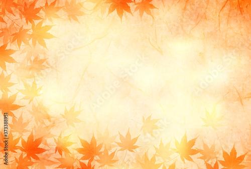 紅葉 和柄 水彩 背景