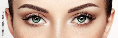Fototapeta Female Eye with Extreme Long False Eyelashes