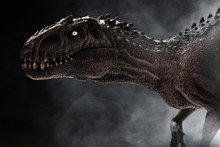Dinosaur, Tyrannosaurus Rex On Dark Background