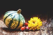 Gourd, Pumpkin, Rose Hip Berry...