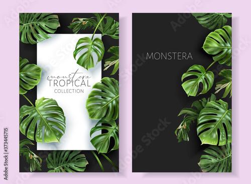 Obraz na plátně Vector tropical frames with green monstera leaves on black background