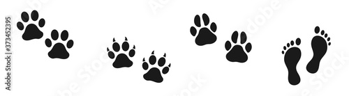 Photo Set of human and animal footprints