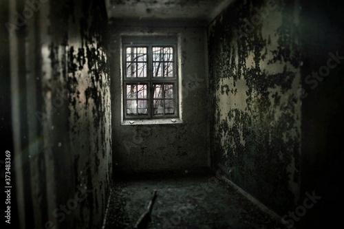 a cell in an abandoned asylum Wallpaper Mural