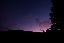 Night Sky With Clouds And Forest