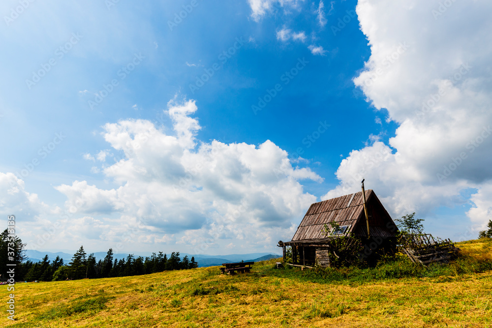 Mountain meadow on sunny summer day in Beskidy, Krawcow Wierch, Poland