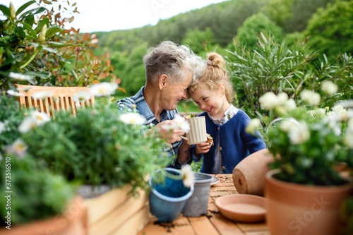 Valokuvatapetti Senior grandmother with small granddaughter gardening on balcony in summer, resting