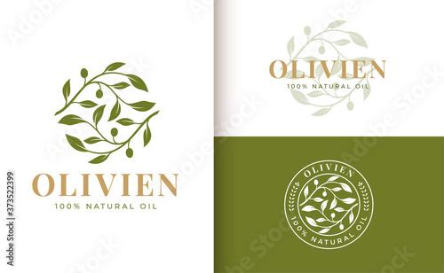 olive branch logo design Canvas Print