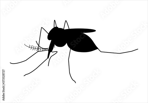 Foto Icono de mosquito  sobre fondo blanco