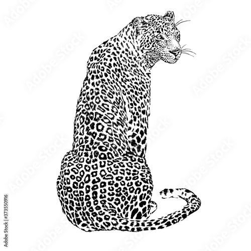 Leinwand Poster Japanese style leopard