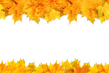 Frame Made By Autumn Leaves. S...