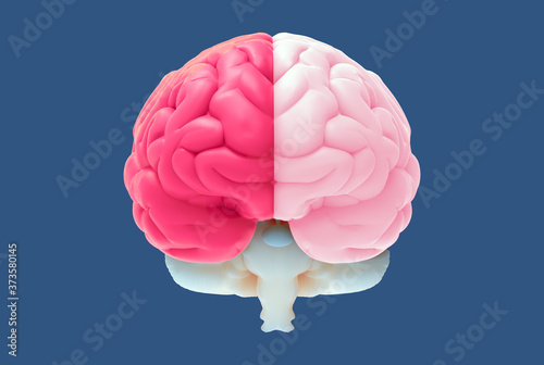 Foto 3D brain illustration with left and right function concept