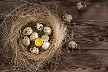 Several Quail Eggs In A Decora...
