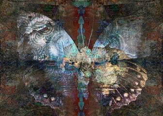 Grunge butterfly Sharman