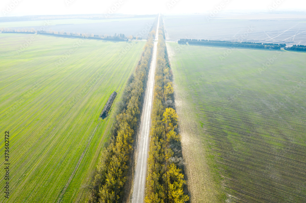 Fototapeta empty country road among agricultural fields. rural landscape in sunny autumn day. birds eyes view