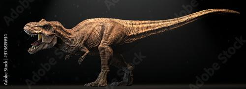 Fotografie, Obraz Angry Dinosaur, closeup,Isolated on black background