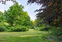 The Lawn Meanders Between The Various Bushes With Trees In A Multitude Of Leaf Shades In This Beautifully Landscaped Garden With A Great Diversity Of Trees And Flowering Shrubs