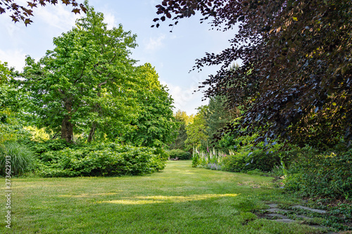 Obraz na plátně The lawn meanders between the various bushes with trees in a multitude of leaf s