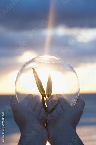 Hände einer Person, die bei Sonnenaufgang einen Schössling in einer Kristallkuge Wallpaper Mural