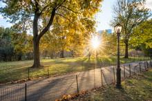 Central Park In Autumn Season,...