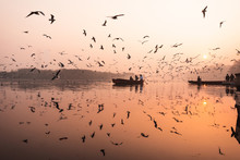 Reflections From Yamuna Ghat, ...