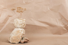 Layout Made Of From A Pile Of Balancing Stones And Dry Flower On Craft Beige Background. Front View Copy Space Monochrom