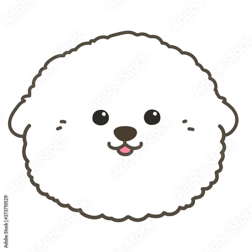 Photo Outlined white Bichon Frise front face