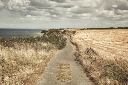 Fototapety, obrazy: Sand road near the cliffs of the normandie in france