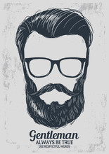 Skulls With Hipster Hair And B...