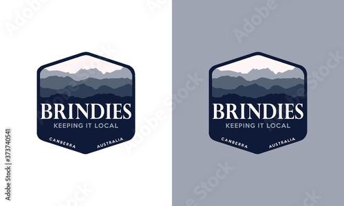 Vászonkép hexagon mountain landscape shape blue logo template modern hill view logo illust