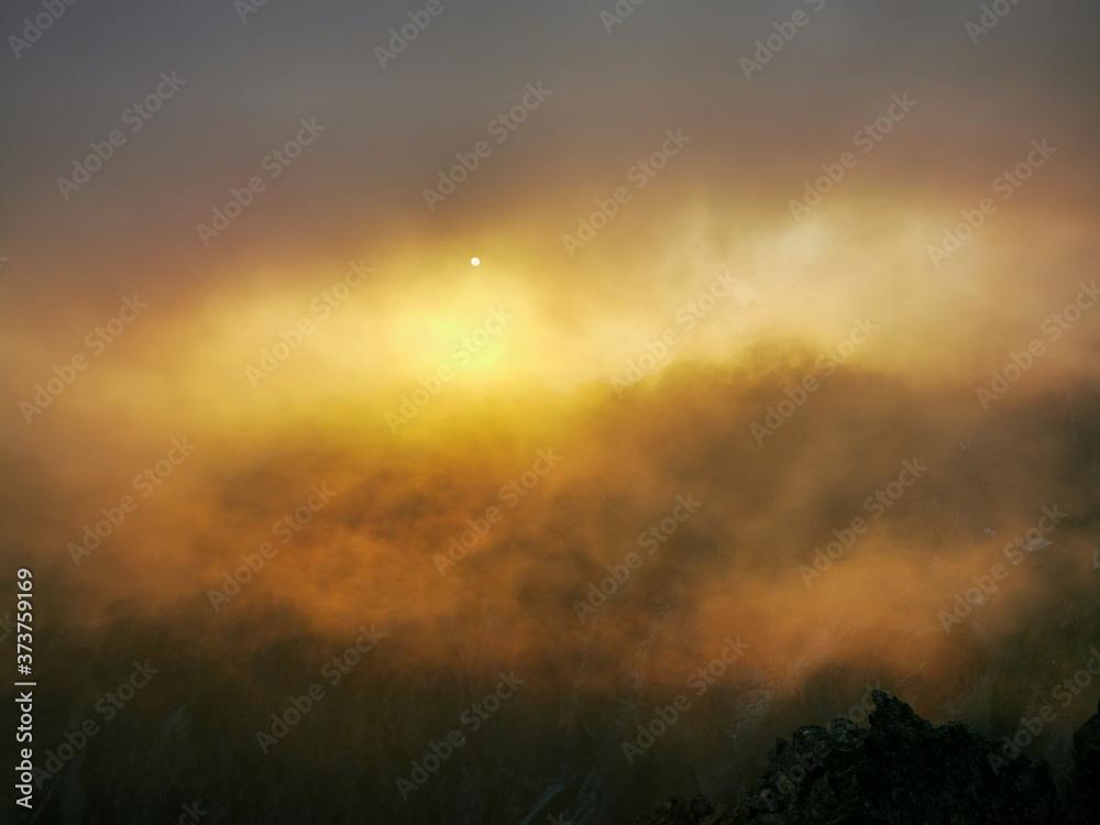 Fototapeta morning mist in the forest