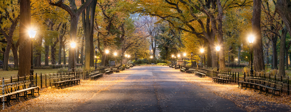 Fototapeta The Mall in Central Park at night, New York City, USA