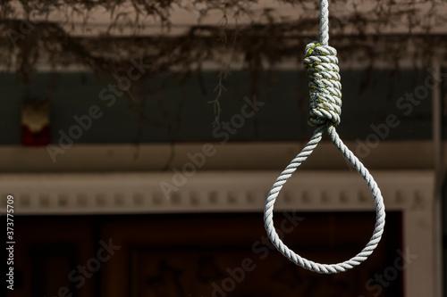 Rope loop or gallows on a dark background. Slika na platnu