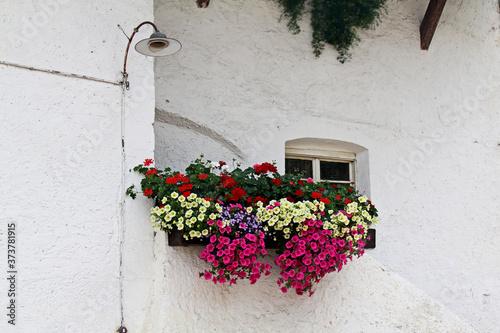 Balcone fiorito a Prissiano (Bolzano) Wallpaper Mural