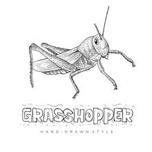 Vector Grasshopper With Hand D...