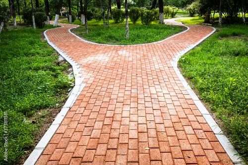 Fotografija Forked sidewalk in the park
