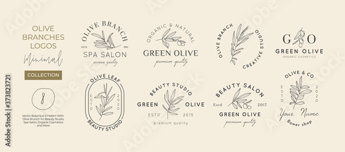 Fotografija Set of Olive branch with leaves logo design template in simple minimal linear style