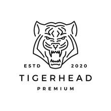 Tiger Head Monoline Logo Vector Icon Illustration