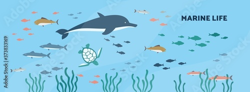 Marine or underwater background with seabed animals flat vector illustration Billede på lærred