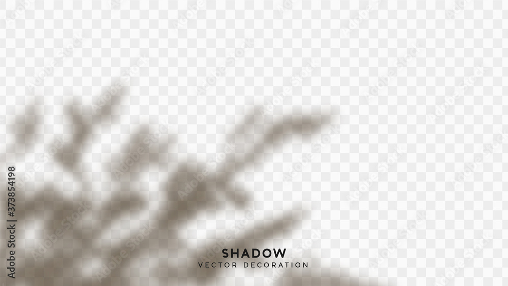Fototapeta Shadow overlay. Effect light transparent shadow. Realistic creating reflective effect illusions. Overlay for adding scene lighting to your images. Vector illustration.