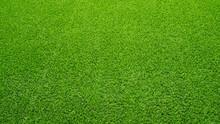 Artificial Grass Field Meadow Green. Top View Texture.